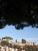 The Forum at Circo Massimo, Rome, Italy