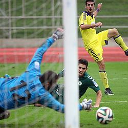 20141109: SLO, Football - Prva liga Telekom Slovenije 2014/15, NK Krka vs NK Maribor
