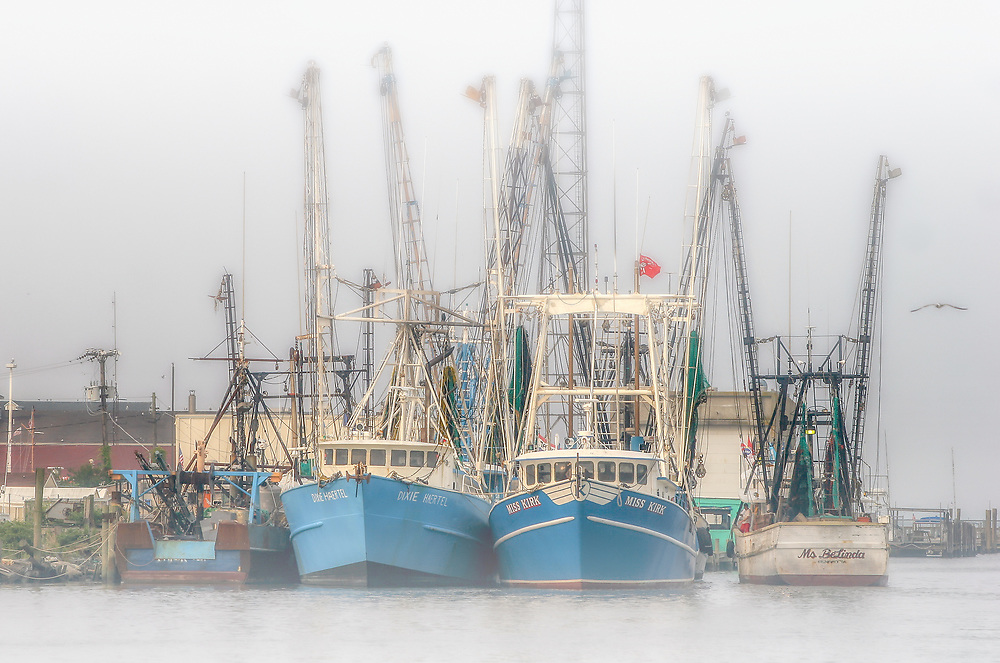 Shrimp Boats Chincoteague Island VA<br /> <br /> Washington DC Washington DC Photography / Washington DC Photographs / Washington DC Images Art for Corporate Decor / Hospitality Decor / Health Care Decor / Interior Design Projects requiring Art of Washington DC<br /> <br /> Exceptional Quality Fine Art Photographic Prints / High-Res Images for Interior Decor Projects<br /> Framed Photographs / Prints / Wall Murals / Images Printed to Metal / Canvas / Acrylic / Wood<br /> <br /> Please click the dcstockphotos.com link at the top of this page to view my more complete and comprehensive collection with thousands of Washington DC Images including Image Galleries of other Regions and Specialties
