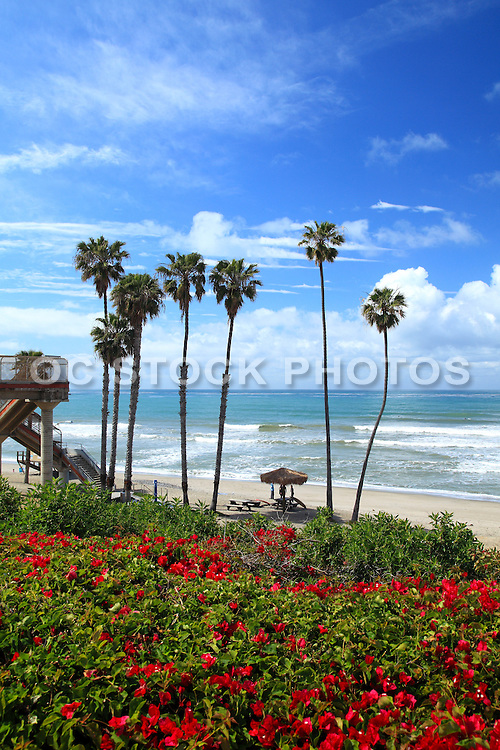 Longboard Surfer At Old Man's Beach