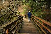 USA, Oregon, Ecola State Park, tourist walking to the beach.