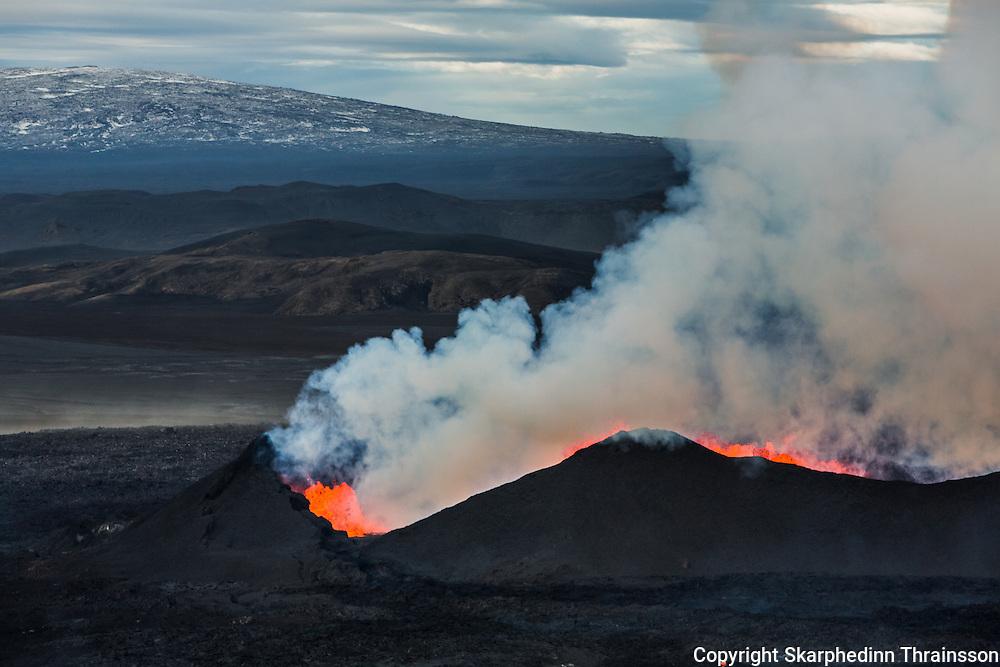 Erupting volcano in Holuhraun