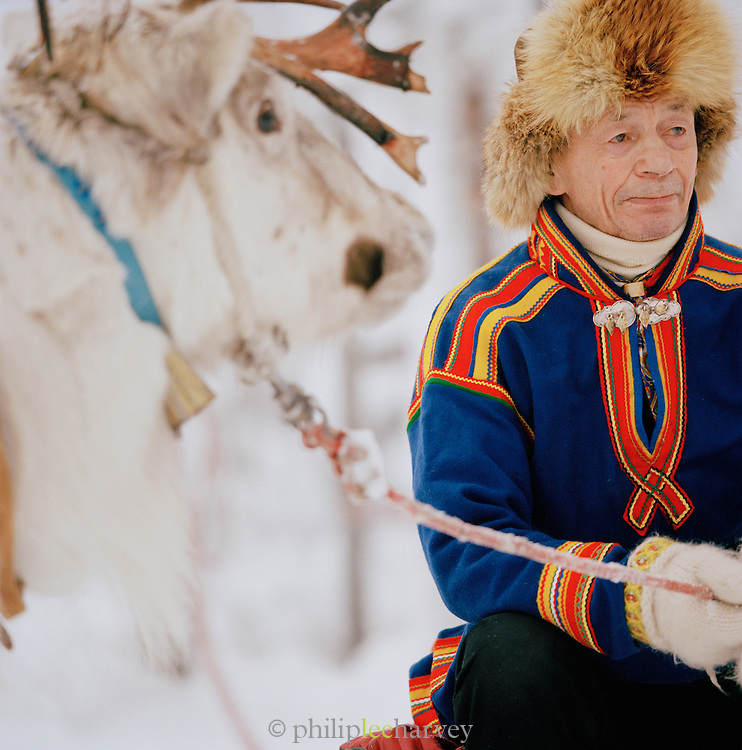 A Sami reindeer herder in Gakti, traditional dress, with a reindeer in Lapland, Sweden