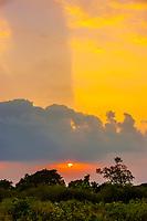 Sunset, Udawalawe National Park, Sri Lanka. Udawalawe is an important habitat for water birds and Sri Lankan elephants.
