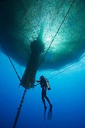scuba diving worker, checking 3,000-cubic-meter submersible fish pen installed in open ocean just off Kona Coast to raise Kona Kampachi, Hawaiian yellowtail, aka almaco jack or kahala, Seriola rivoliana, Kona Blue Water Farms, Big Island, Hawaii, Pacific Ocean