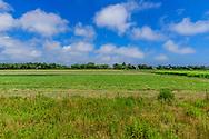 Farmfield, 173 Davids Ln, Water Mill, NY