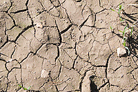 Dry earth on farm in County Wexford Ireland