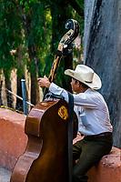 Man playing a bass, Parque de las Acacias, Guanajuato, Mexico