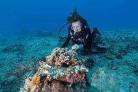 Sylvia examining reef in Seychelles