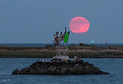 Harvest Moon with Vultures