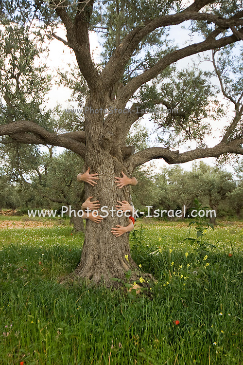 Embrace Nature - tree hugging green ecological concept