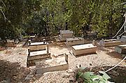 Israel, Jerusalem Mountains, Ein Hemed National Park (AKA Aqua Bella) Arab cemetery