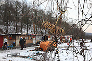 Romanian migrants nestled in woods nearby motorway. Roma squat in the snow. Clemart, Paris Suburbs, France<br /><br />Eastern european Roma migrants, often from Romania and Bulgaria, searching for better opportunities, they move near to western european cities. They typically are poor and live in squats, here around the periphery of Paris, in the suburbs 'banlieu' where they typically build ramshackle homes from recycled wooden panels and corrugated iron, or sometimes benders made from branches covered in tarpaulins. They live in woods and forest, industrial estates or derelict buildings. Life is especially difficult for them in the harsh conditions of winter and rain. Most of these camps get destroyed by police and Roma are eventually evicted, some deported back home or moving on to build another home. They often survive by recycling metal and electronic goods, selling recycled clothes and objects they find in trash bins, or through begging or playing music on the city streets or inside metro stations. Paris, France