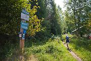 Galena Trail, New Denver, Slocan Valley, West Kootenay, British Columbia, Canada (MR)