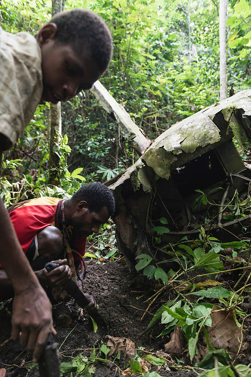 Patrick Muwom uses a machete to dig for bullets at the crash site of an A-20 Havoc, a United States Army Air Forces plane which went down in the jungle near the Clay River in Papua New Guinea on April 5, 1944. Both crewmen lost their lives in the crash.<br /> <br /> (June 21, 2019)