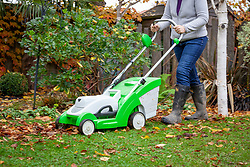 Using a mower to remove fallen leaves from a lawn.