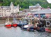 Trawlers fishing boats at quayside at Oban, Argyll and Bute, Scotland, UK