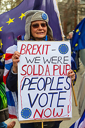 """Many pro EU campaigners are convinced that the result of the Brexit referendum was based on lies and false promises and demand a """"people's Vote"""" - a further referendum to decide the UK's future relationship with the EU. London, January 14 2019."""