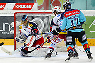 24.03.2011, Rapperswil-Jona, Eishockey NLA Playout, Rapperswil-Jona Lakers - HC Ambri-Piotta, Antonio Rizzello (LAK) gegen Thomas Baeumle (AMB)  (Thomas Oswald/hockeypics)