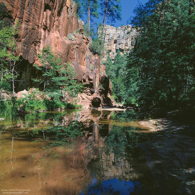 Red rock cliffs reflected in the West Fork of Oak Creek in Oak Creek Canyon near Sedona, Arizona