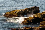 View of wave on rocks, Acadia National Park, near Bar Harbor, Maine, USA.