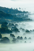 A tide of morning mist obscures and reveals trees at Chatsworth Park in the Peak District. Captured from Baslow Edge, Derbyshire, England, UK. Summer, temperature inversion.