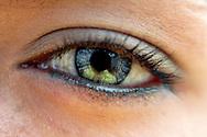 copyright  2002<br /> andreas schwaiger  photographer<br /> po box 8460<br /> ch - 8036  zurich   switzerland<br /> www.schwaiger.ch
