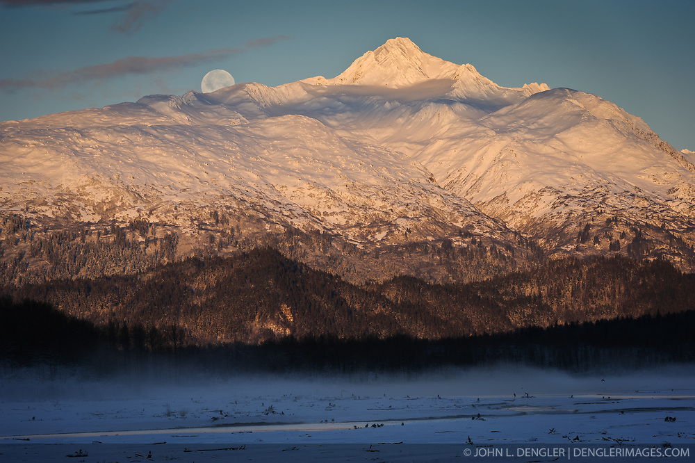 The moon sets over Four Winds Mountain during sunrise in the Alaska Chilkat Bald Eagle Preserve near Haines, Alaska. One of the largest gatherings of bald eagles in the world occurs in November along the Chilkat River. A close examination of this photo shows approximately 66 bald eagles on the Chilkat River gravel bar. In 1982, the 48,000 acre area was designated as the Alaska Chilkat Bald Eagle Preserve.