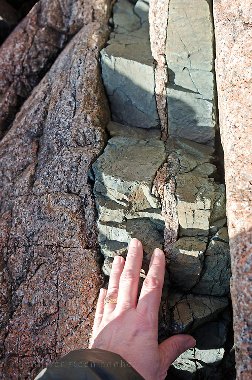 Woman's hand for scale near a basalt dyke in pink Cadillac Mountain Granite on the shore near Seal Harbor, Maine.