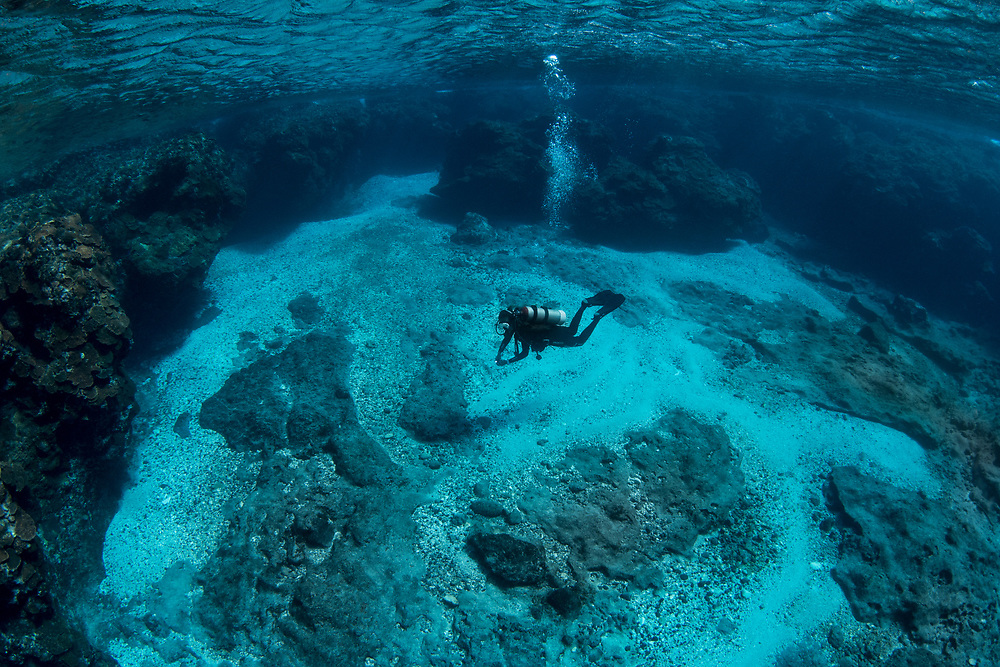 Taiwanese diver exploring a shallow reef; Green Island; volcanic; island; Pacific Ocean; Taiwan; coral; scuba; diving; wild wonders; china