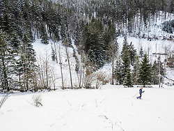 Girl ski walking with lush foliage in background in Black Forest, Germany, Europe
