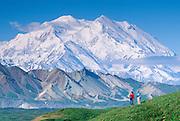 Alaska. Denali National Park. Hikers enjoy view of Mt McKinley (20,320 ft). MR.
