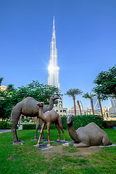 Sculpture of camels in park adjacent to Burj Khalifa tower in Downtown Dubai United Arab Emirates
