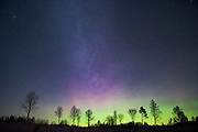 Light northern lights (Aurora borealis) in New Years night, Northern Vidzeme, Latvia Ⓒ Davis Ulands | davisulands.com
