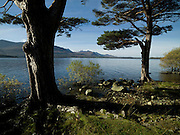 Lough Lein, Killarney viewed from Mahony's Point in Killarney Golf Club.<br /> Picture by Don MacMonagle