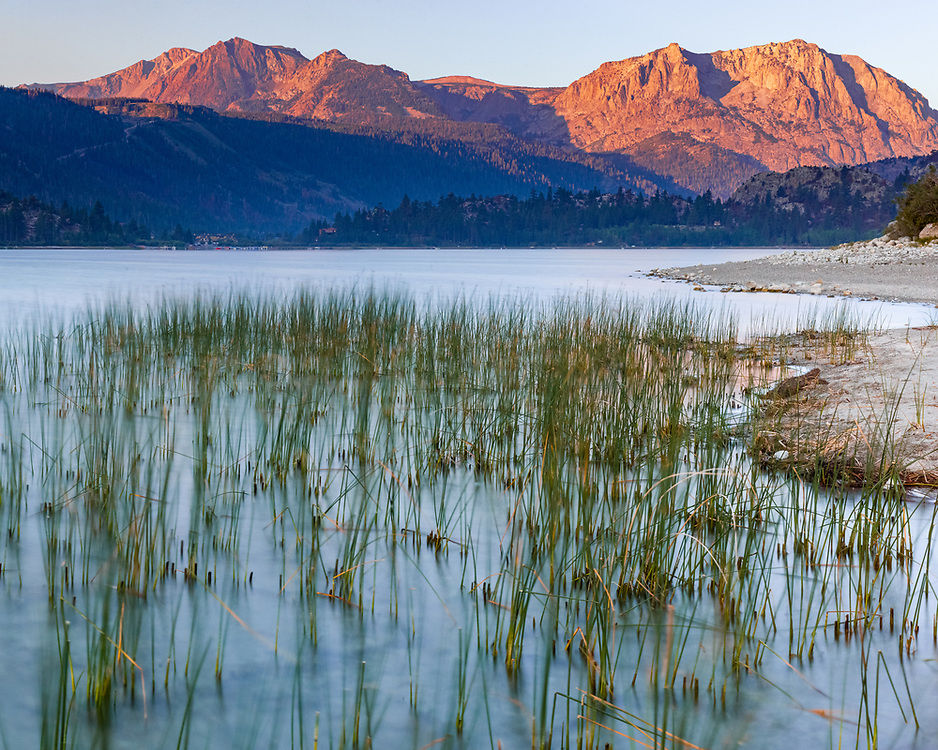 https://Duncan.co/grasses-and-morning-light-at-june-lake