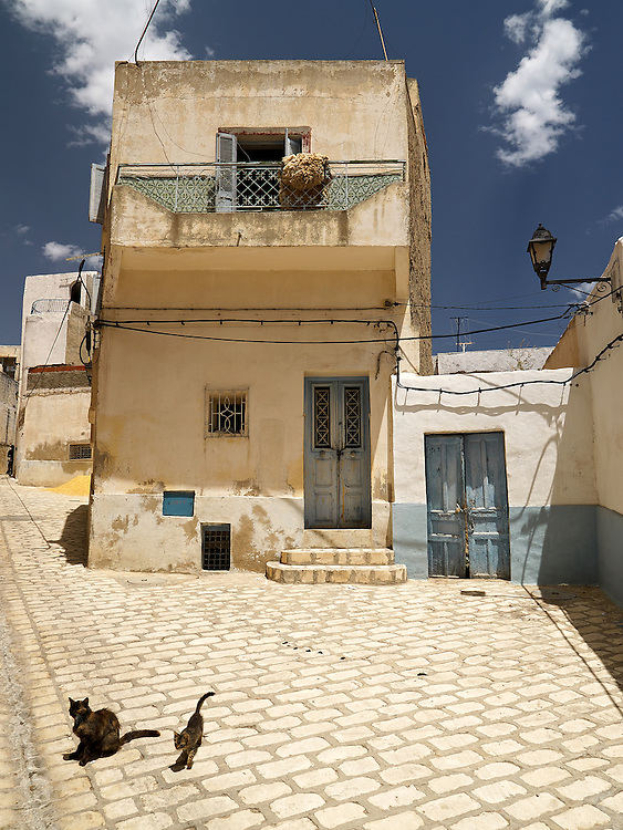 Tunisia - House with cats