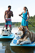 A young couple and their dog on a stand up paddle boarding outing.