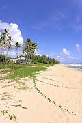 Gillin's Beach, Mahaulepu, Kauai, Hawaii<br />