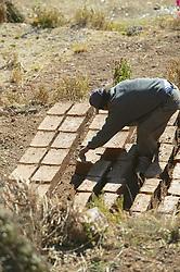 Man And Drying Adobe Bricks