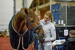 Witte-Vrees Madeleine, NED, Cennin<br /> Horse Inspection - The Dutch Masters<br /> © Hippo Foto - Sharon Vandeput<br /> 14/03/19
