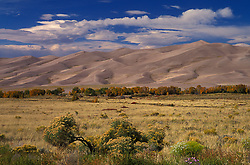 Meadow leading to mammoth sand dunes