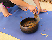 Tibetan meditation bowl or singing bowl in use by a meditating group