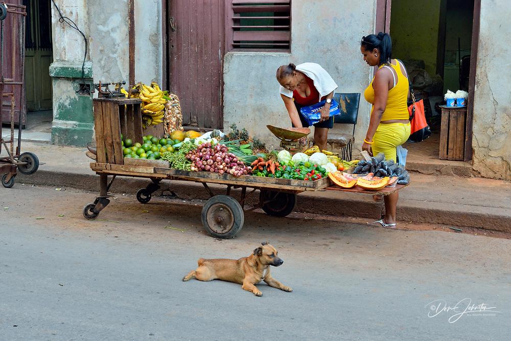 Street commerce in central Havana- Fruit vendor, La Habana (Havana), Habana, Cuba