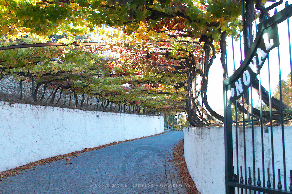 gate and entrance road quinta do noval douro portugal