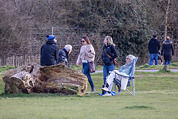 © Licensed to London News Pictures. 19/03/2021. London, UK. Members of the public enjoy the sunshine in Richmond Park, South West London as the UK welcomes the first day of Astronomical Spring tomorrow with weather forecasters predicting cold mornings but with a mild 12c for the week ahead. Photo credit: Alex Lentati/LNP