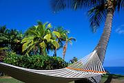 Hammock and palm trees on Kealakekua Bay, Kona Coast, The Big Island, Hawaii