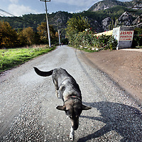 Turkije,Cirali, Antalya ,27 november 2007..Een bijna verlaten  kustplaatsje Cirali..Een straatbeeld met rechts 1 van de vele verscholen pensionnetjes...Foto:Jean-Pierre Jans