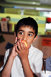 Schoolboy eating an apple - fruit is given free to schoolchildren in Yorkshire; UK