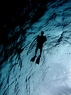 DIVING WITH ALAN
